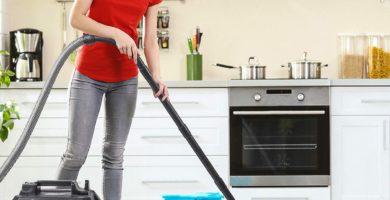 aspiradoras limpia tapiz