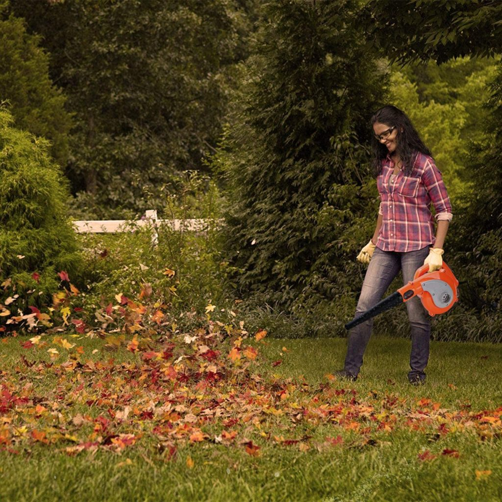 Octavo lugar mejores aspiradoras de jardín baratas