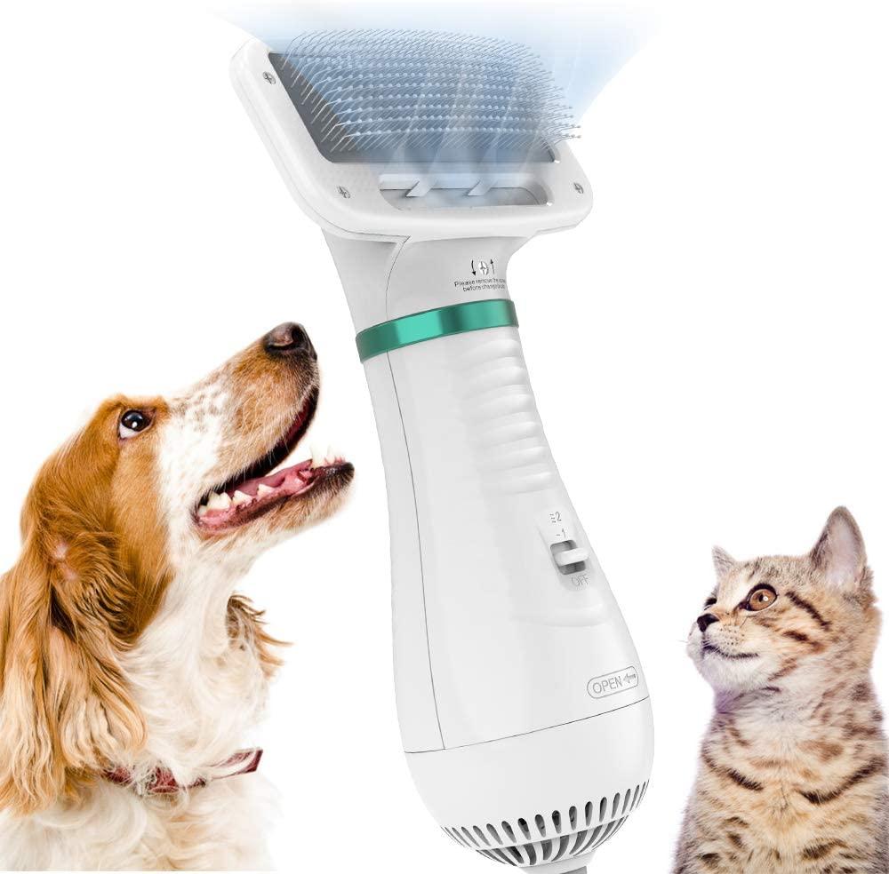 los 7 mejores secadores para perros